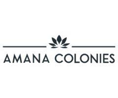 AMANA COLONIES TANNEBAUM FOREST