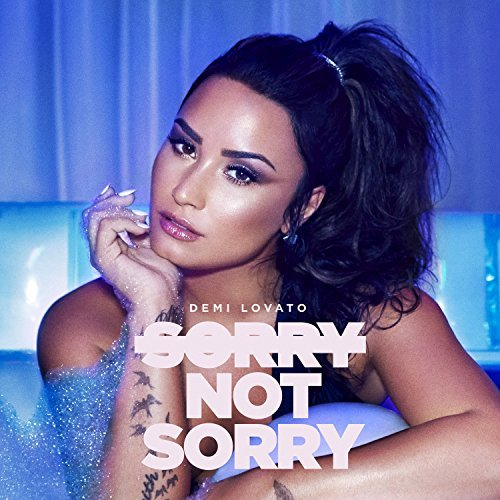 Sorry Not Sorry - Sorry Not Sorry
